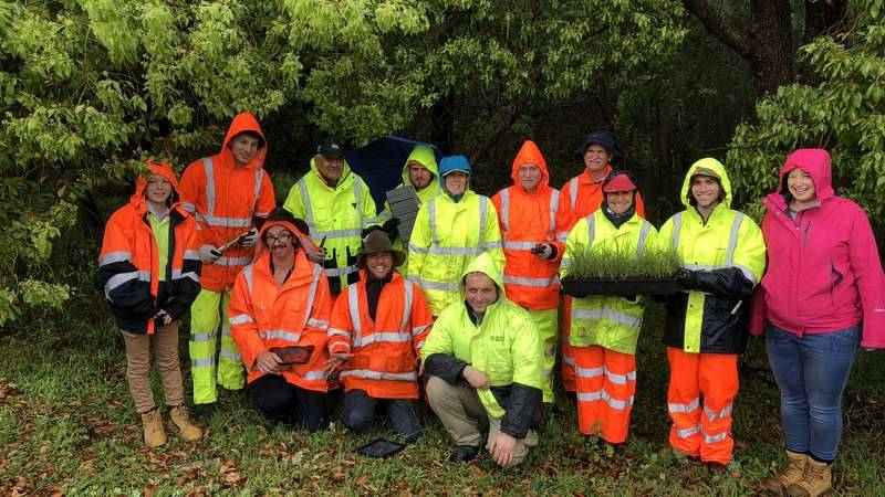 Representatives from Conservation Volunteers Australia, Georges Riverkeeper and City of Canterbury Bankstown, wearing high vis yellow and orange clothing, stand in the rain, in front of green trees, holding seedlings.