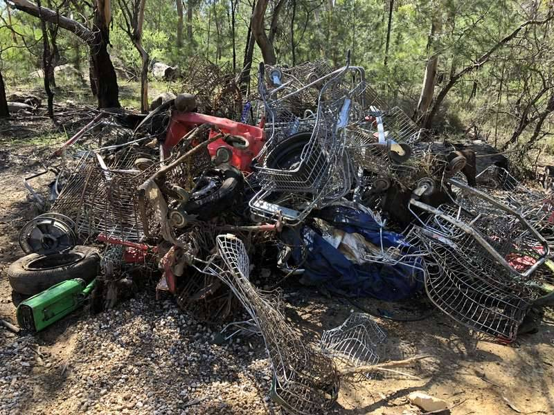 Over 30 shopping trolleys were removed from the creekline at Simmos Beach
