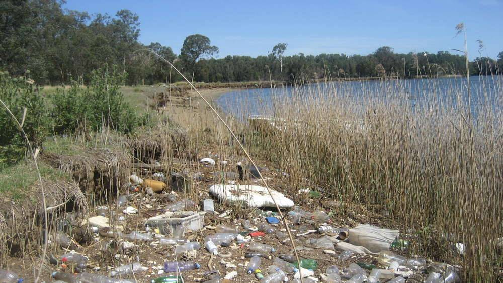 Georges River - Litter