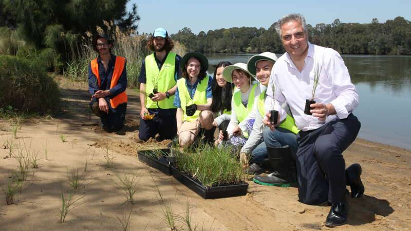 Fairfield Mayor Carbone with CVA volunteers planting along the Georges River