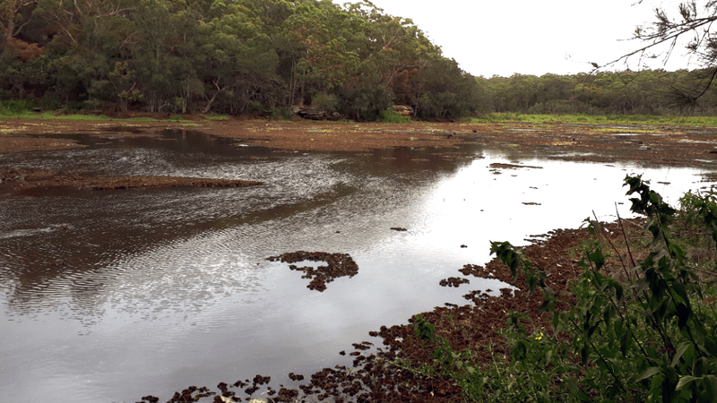 Saltwater flows into Yeramba Lagoon on the Georges River