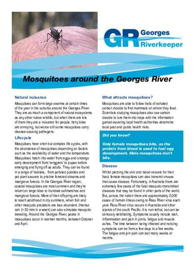 Mosquitoes around the Georges River Factsheet